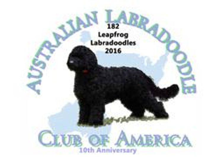 Leapfrog Labradoodles