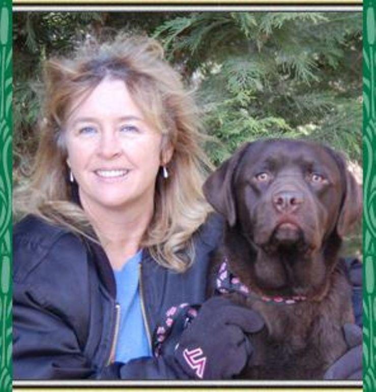 Dry Run Retrievers Labrador Retrievers